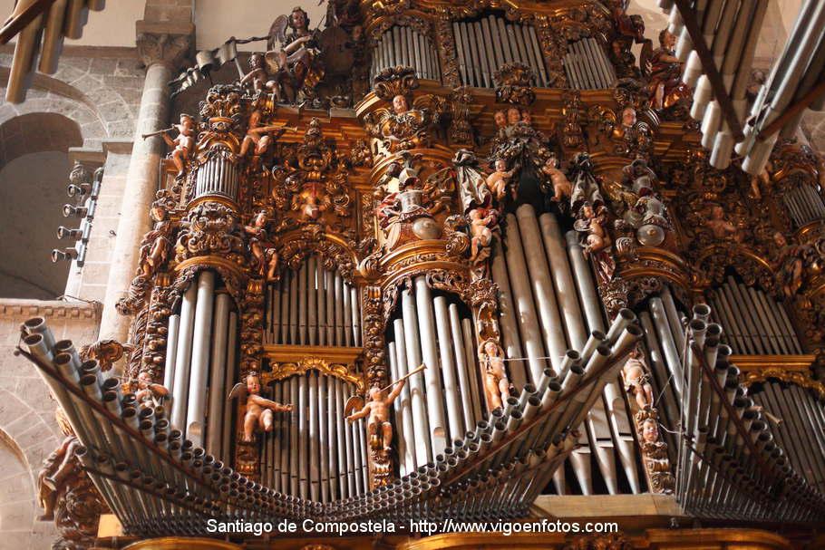 rgano catedral