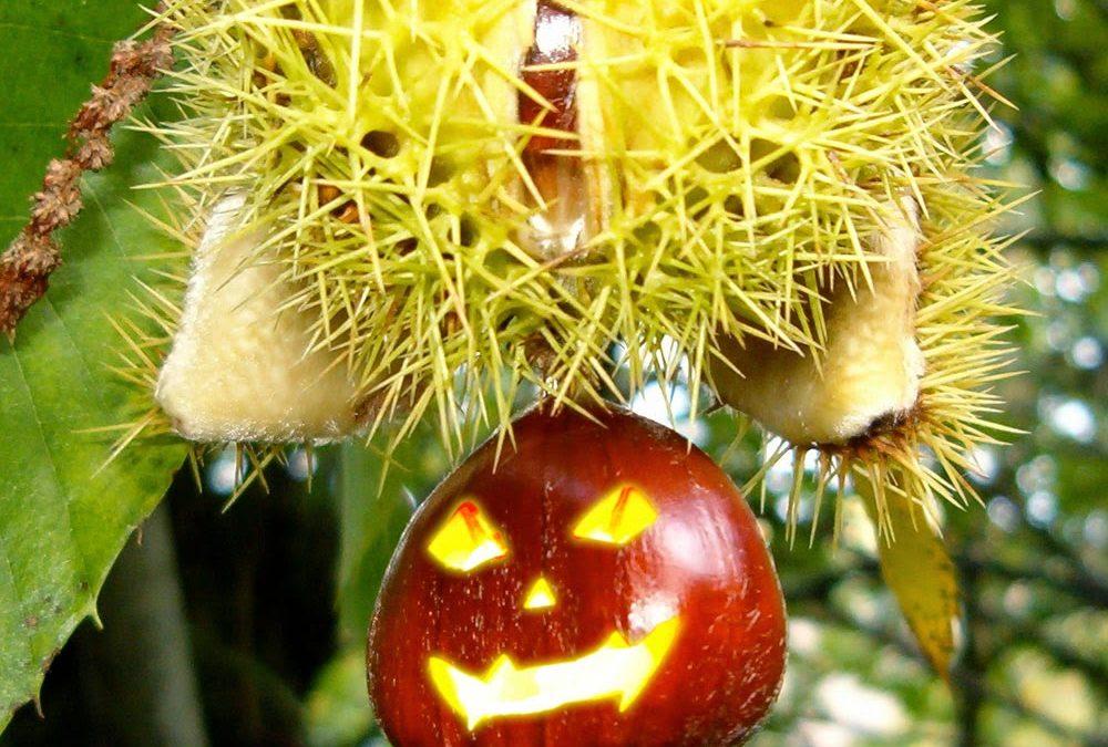 Samaín, el origen de Halloween